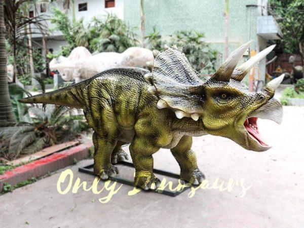 Animatronic Triceratops for Dinosaur Park5