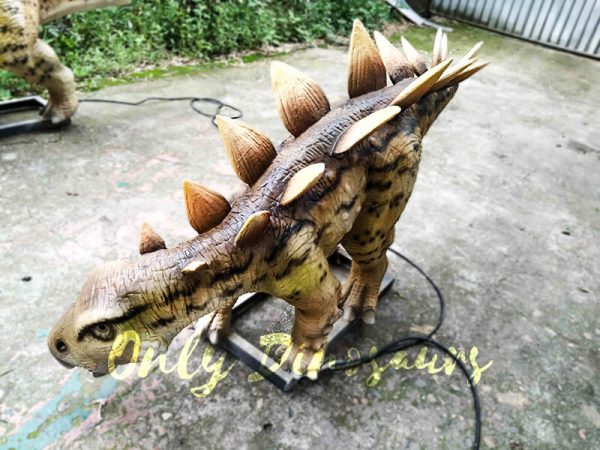 Animatronic Young Stegosaurus Props for Garden2
