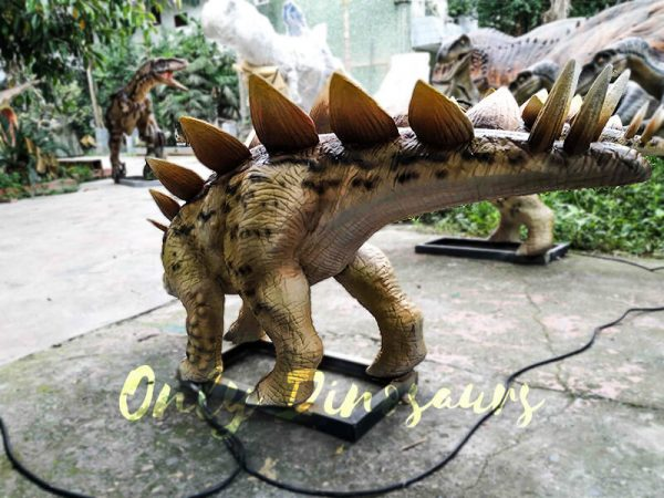 Animatronic Young Stegosaurus Props for Garden3
