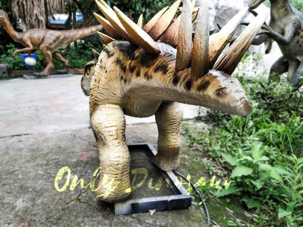 Animatronic Young Stegosaurus Props for Garden6