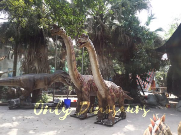 Animatronics Brachiosaurus in Group for sale3