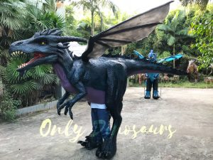 Awesome Black Dragon Costume