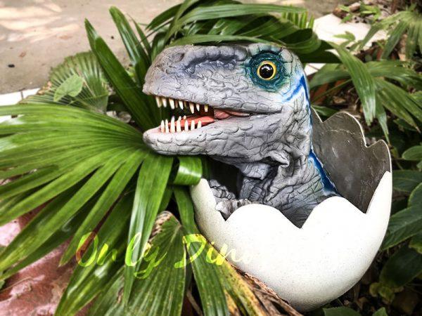 Baby Blue Velociraptor Newborn in Eggshell1