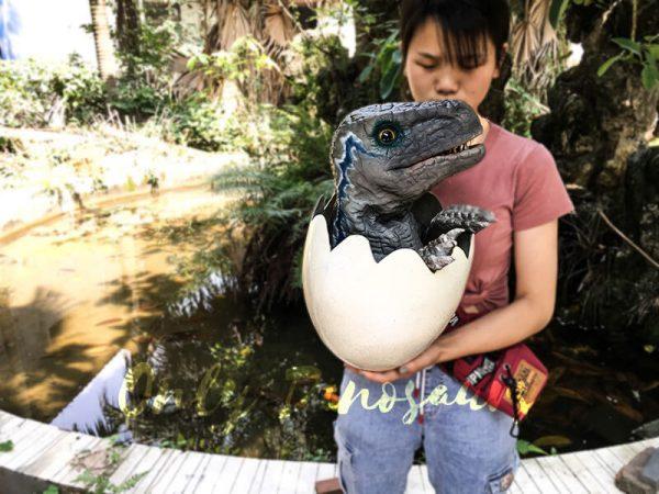 Baby Blue Velociraptor Newborn in Eggshell3