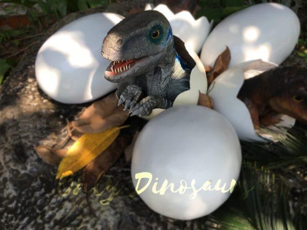 Baby-Blue-Velociraptor-Newborn-in-Eggshell6