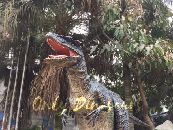 Black-Realistic-Raptor-Costume-For-Dinosaur-Party333-1