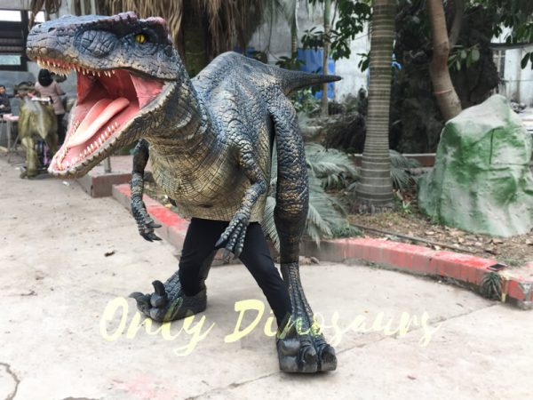 Black-Realistic-Raptor-Costume-For-Dinosaur-Party333-3