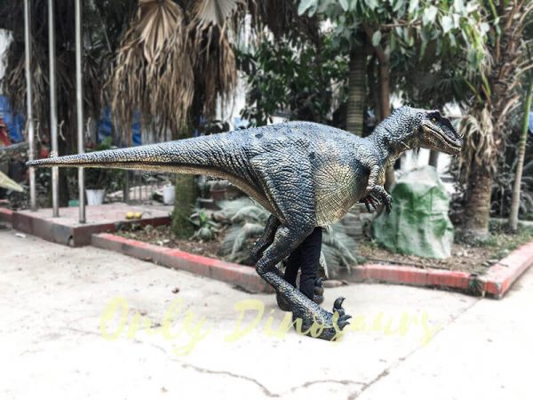 Black Realistic Raptor Costume for Dinosaur Party2