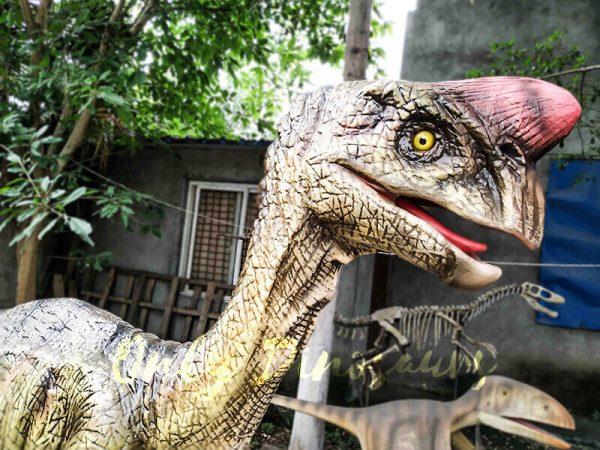 Buy Animatronics Oviraptor for Dinosaur Event1