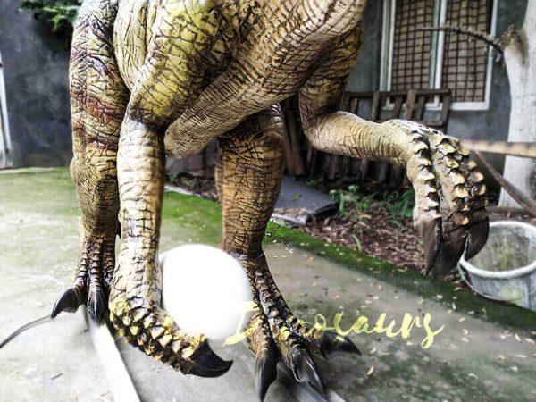 Buy Animatronics Oviraptor for Dinosaur Event6