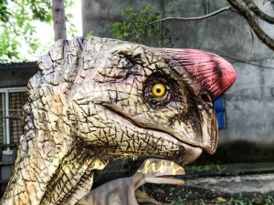 Buy Animatronics Oviraptor for Dinosaur Event