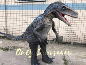 Cheap Dinosaur Costume Standing Raptor