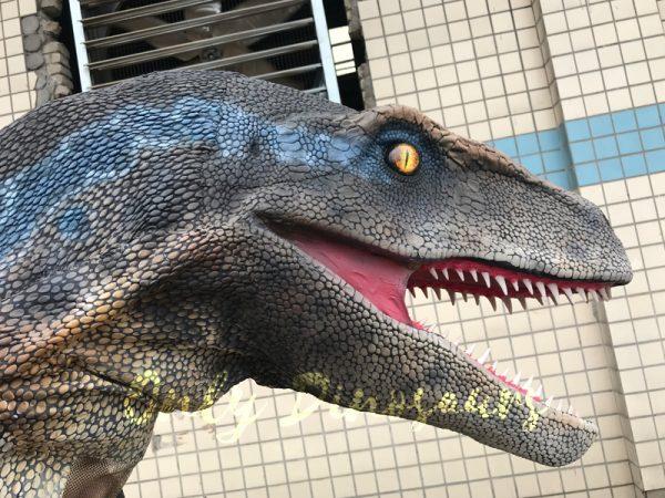 Cheap-Dinosaur-Costume-Standing-Raptor444