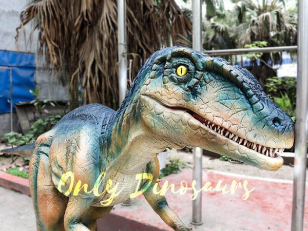 Colorful Animatronic Robot Raptor for sale1
