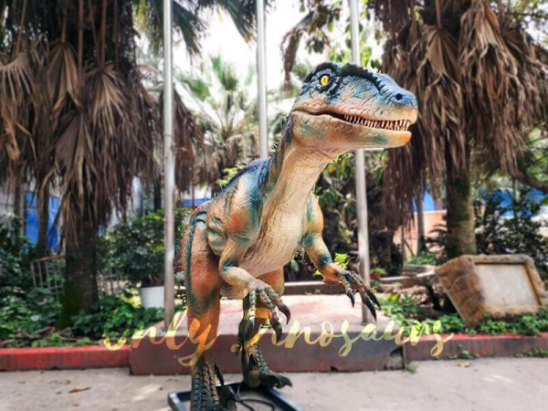 Colorful Animatronic Robot Raptor for sale2