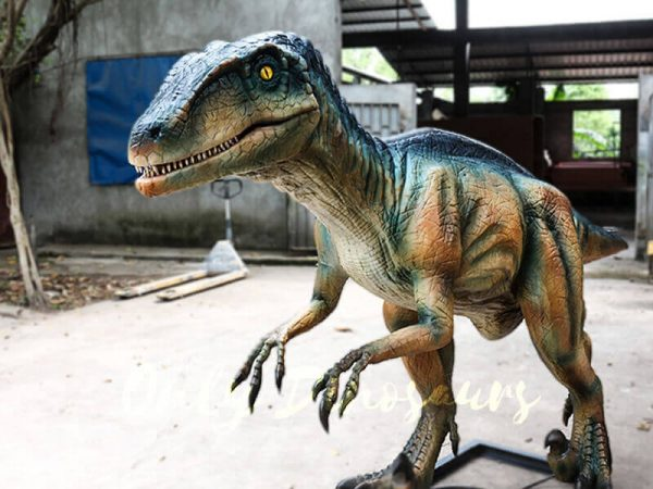 Colorful Animatronic Robot Raptor for sale5