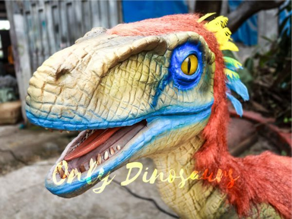 Colorful Feathered Animatronic Raptor for Show1