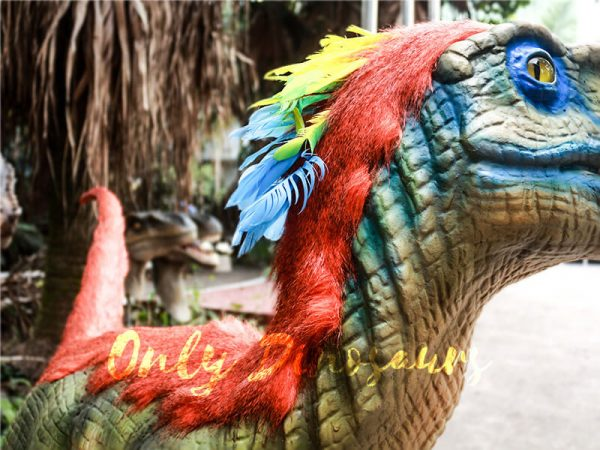Colorful Feathered Animatronic Raptor for Show6