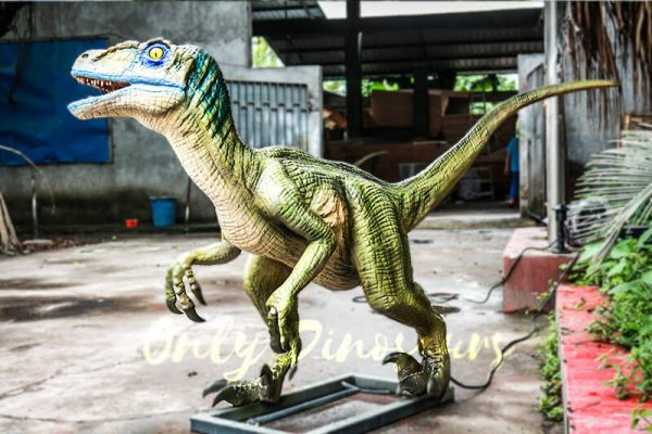 Custom Animatronic Raptor in Green3