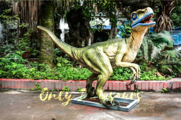 Custom Animatronic Raptor in Green5