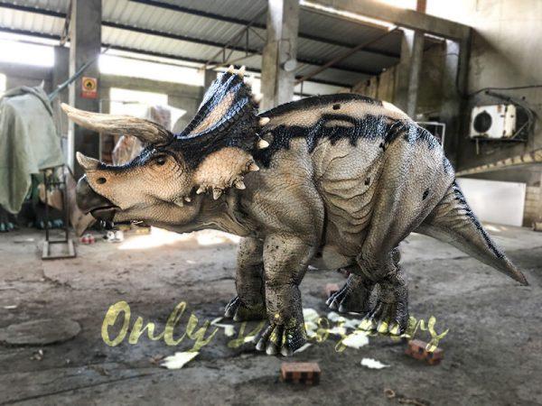 Custom Jurassic Park Triceratops Costumes1