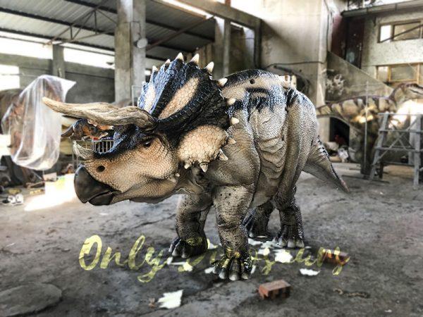 Custom Jurassic Park Triceratops Costumes5