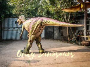 Customized Velociraptor Costume Red & Green