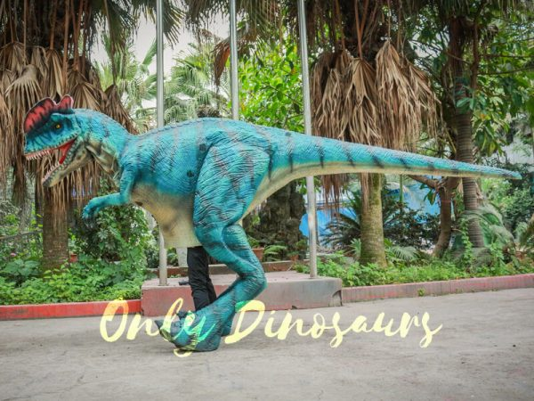 Dilophosaurus-Costume-For-Trade-Show-Attractions222