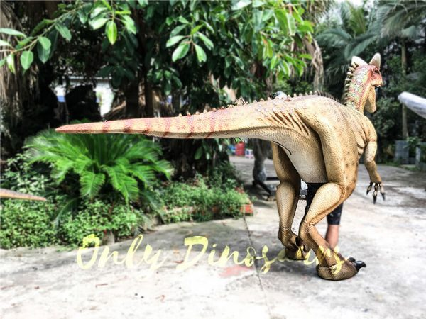 Dinosaur Adventure Park Interactive Realistic Dinosaur Costume2
