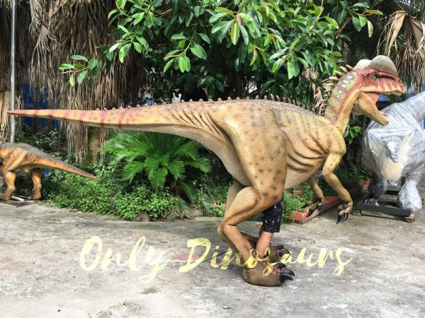 Dinosaur-Adventure-Park-Interactive-Realistic-Dinosaur-Costume222
