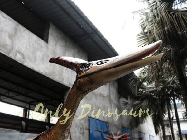 Dinosaur Animatronic Pterodactyl on stump3