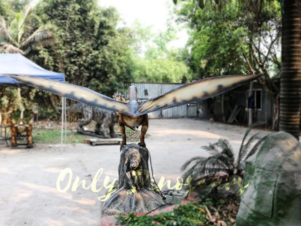 Dinosaur Event Props Animatronic Dinosaurs Pterosaur6