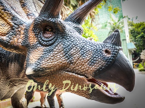 Dinosaur Exhibition Attract Animatronic Triceratops Family2