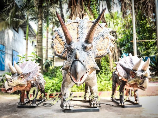 Dinosaur Exhibition Attract Animatronic Triceratops Family3