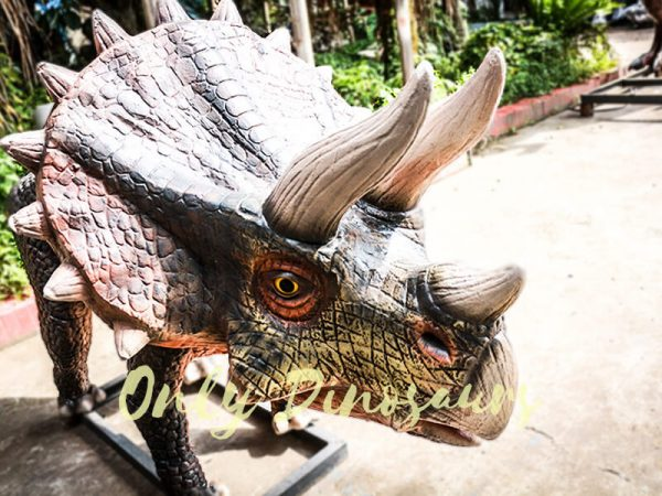 Dinosaur Exhibition Attract Animatronic Triceratops Family7