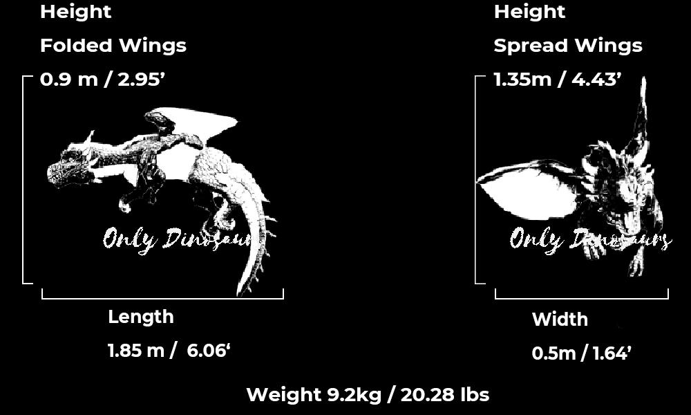 Dragon Shoulder Puppet Size Guid