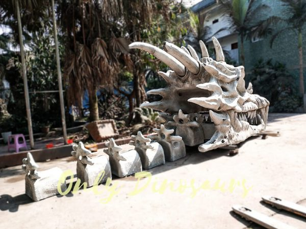GOT Giant Dragon Skeleton for Theme Park3