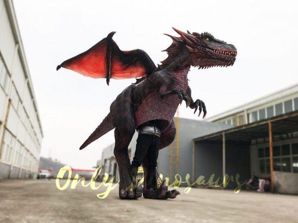 Halloween-Dragon-Costume-Visible-Legs2-1