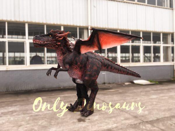 Halloween-Dragon-Costume-Visible-Legs4