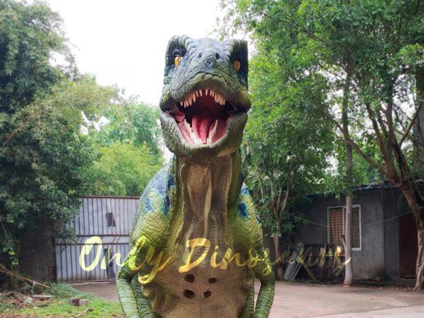 Hot-Sale-Raptor-Costume-In-Vivid-Green111