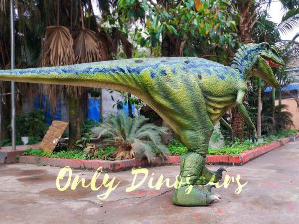 Hot-Sale-Raptor-Costume-In-Vivid-Green444