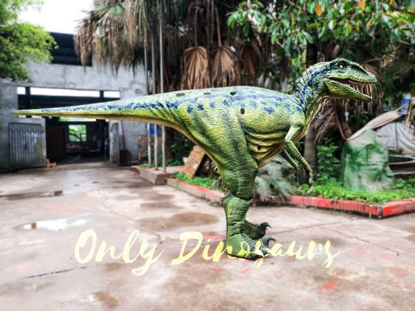 Hot Sale Raptor Costume in Vivid Green1
