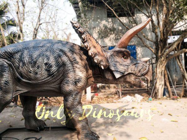 Jurassic Adventure Park Animatronic Triceratops2