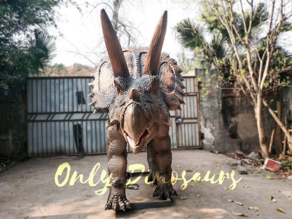 Jurassic Adventure Park Animatronic Triceratops3