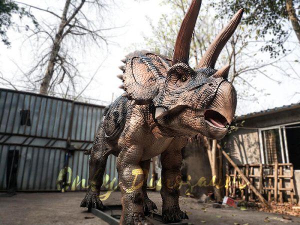 Jurassic Adventure Park Animatronic Triceratops4