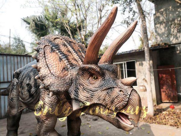 Jurassic Adventure Park Animatronic Triceratops5