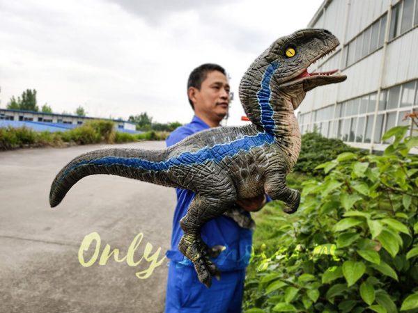 Jurassic Baby Blue Raptor Dinosaur Hand Puppet2