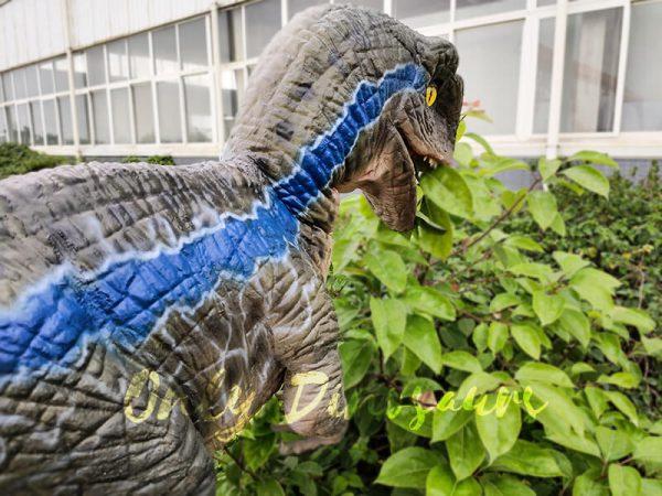 Jurassic Baby Blue Raptor Dinosaur Hand Puppet3