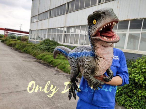 Jurassic Baby Blue Raptor Dinosaur Hand Puppet6