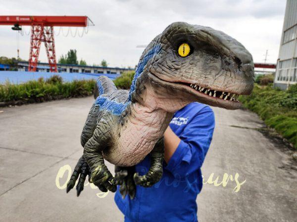 Jurassic Baby Blue Raptor Dinosaur Hand Puppet7
